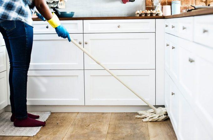 Cara Mengusir Binatang Pengganggu di Dalam Rumah