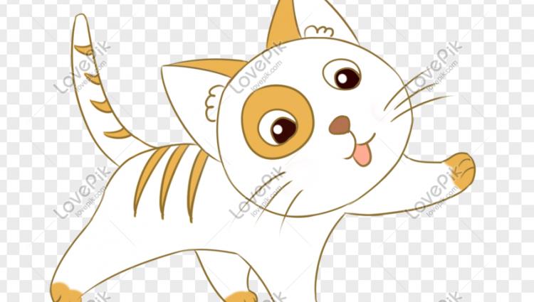 Si Anak Kucing Menjengkelkan yang Menyelamatkan Nyawa